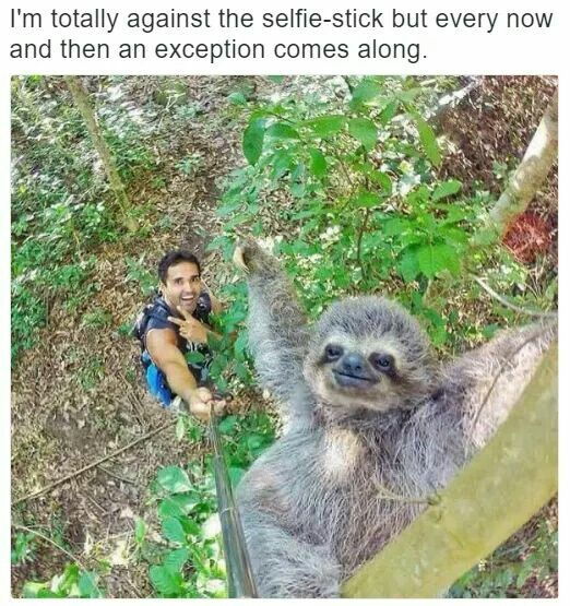 selfie-stick exception