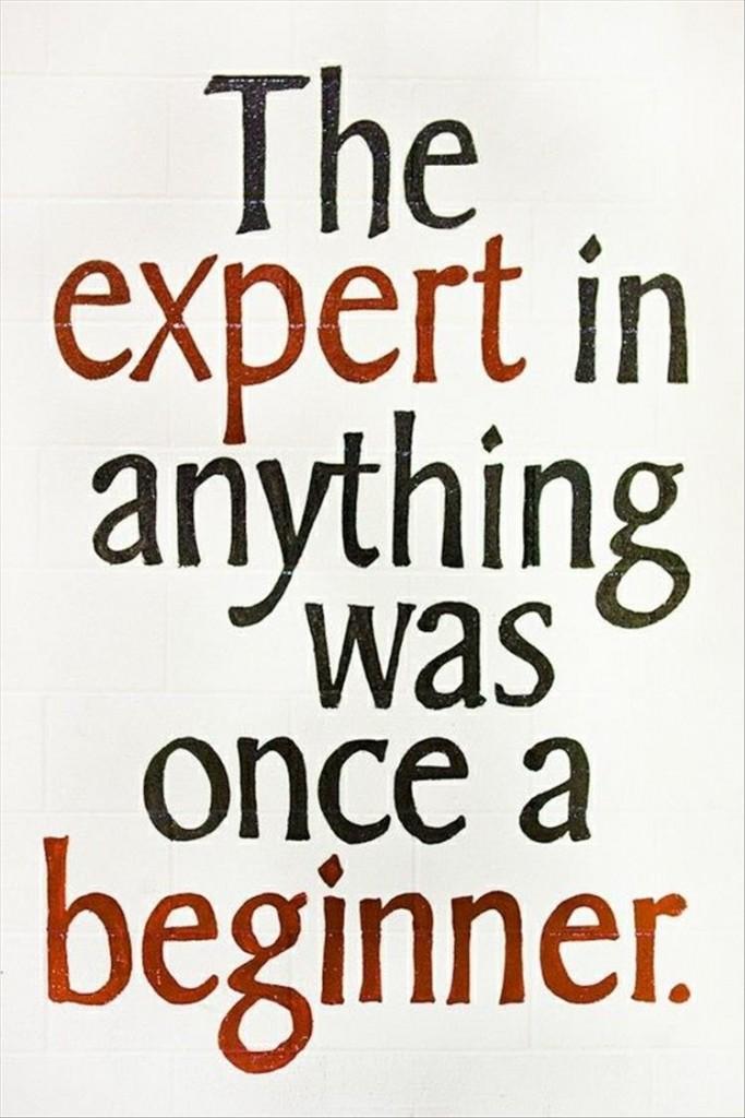 expert-once-beginner