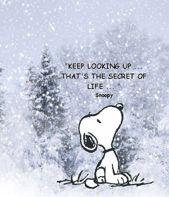 keep-looking-up-snoopy
