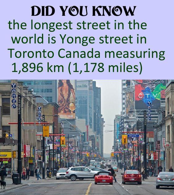 longest-street-toronto