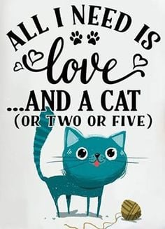 all-i-need-is-love-and-a-cat