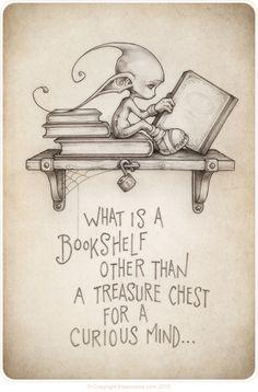 bookshelf-treasure-for-curious