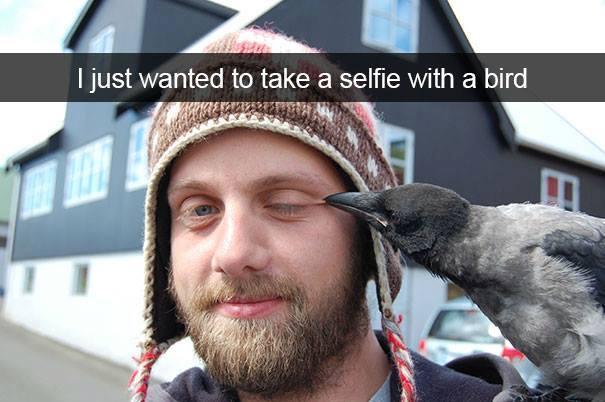 bird-selfie