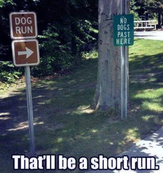 short-dog-run-signs